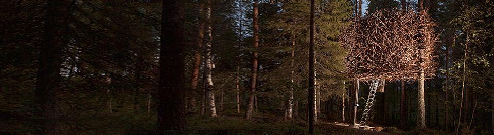 Treehotel - Birdsnest