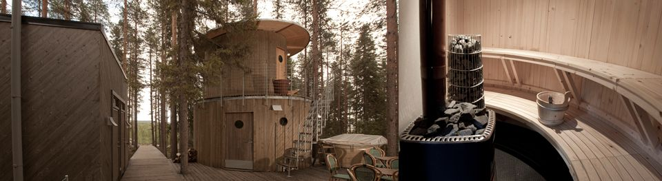 Tree hotel - tree sauna