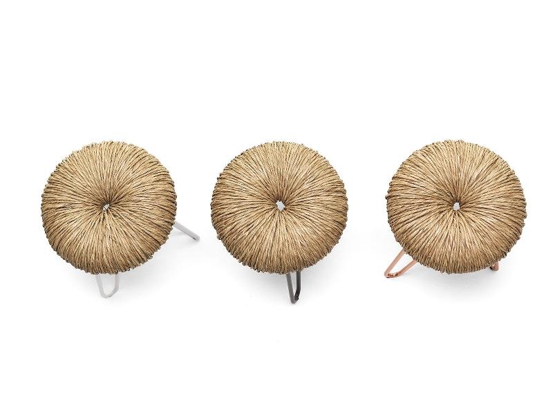 donut - mogg