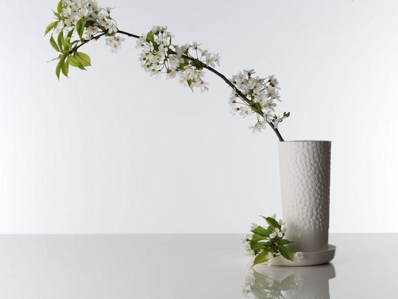 vaso Pure - feinedinge
