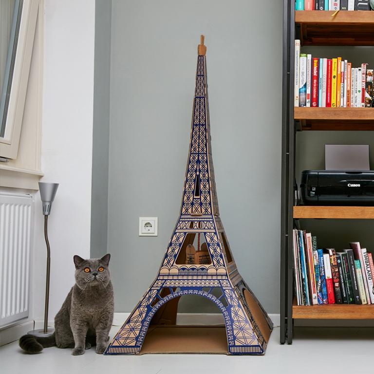 dimore per gatti