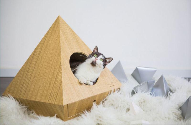 cucce per cani e gatti