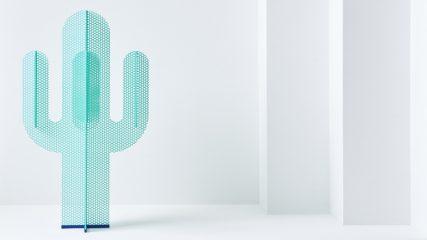 Fade out cactus Frederik Kurzweg