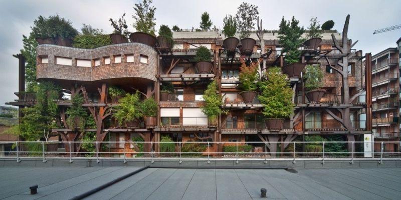 La casa fra gli alberi