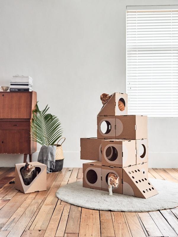 Case di cartone a misura di gatto