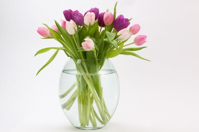 Traduzioni dal linguaggio dei fiori