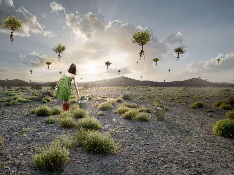 Yellowkorner fotografie d'arte
