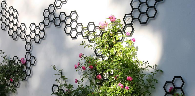 struttura Comb-ination Flora